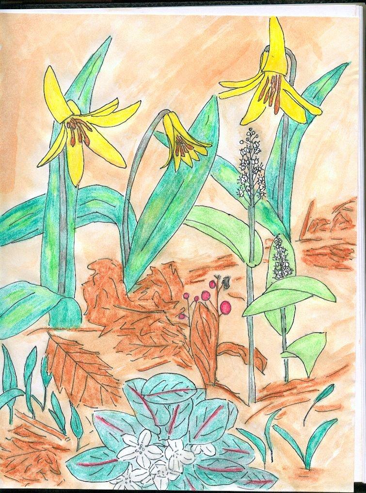 fleurs25.jpg